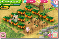 Pretty Pet Farm Halloween